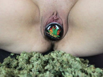 Cheesy Dick Vagina Cannabis Picture Competition Winner 2018